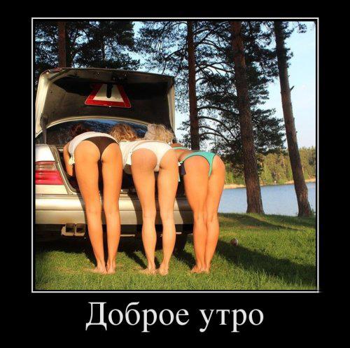 доброе утро - демотиватор 3 девушки стоят рачком