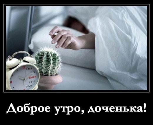 """демотиватор прикол с кактусом """"доброе утро доченька"""""""