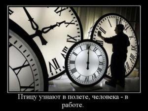 Демотиваторы про работу (50 шт)