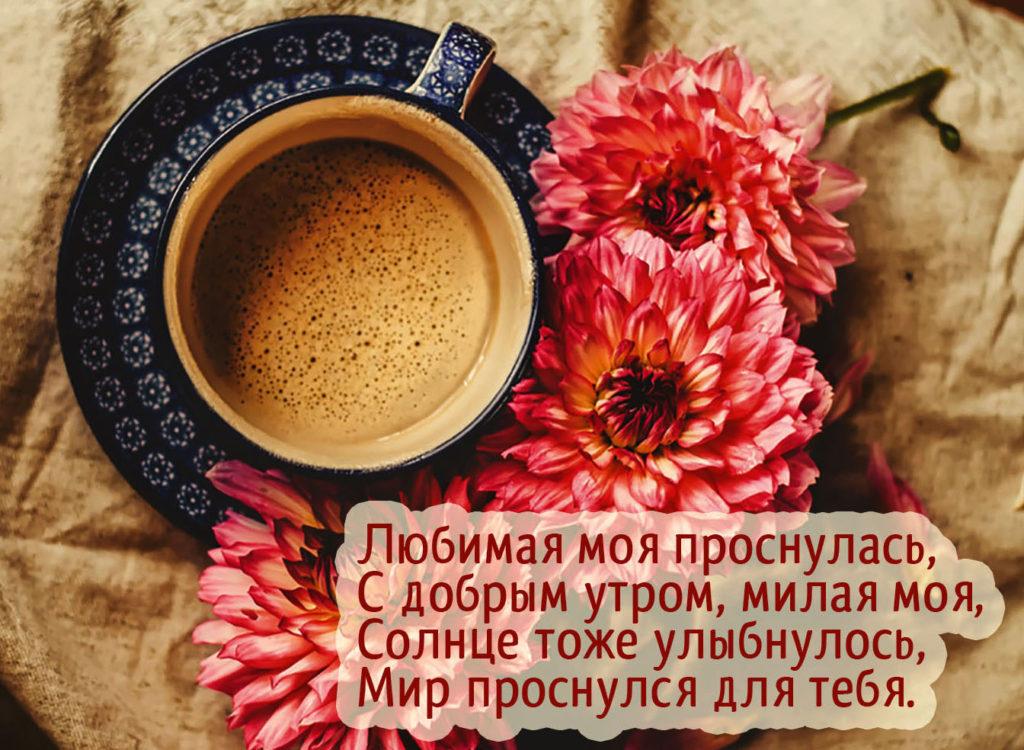 rolik-molodie-nezhniy-stih-lyubimoy-s-dobrim-utrom