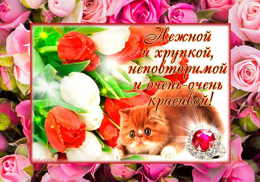 кот-цветы-комплимент картинка